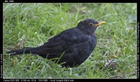 COSPAR Early Bird Registraton Closing Soon!